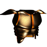 Bronze armour. Bronze demon armour - illustration from online game In Nomine Credimus Stock Images