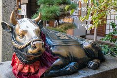 Bronze sculpture of a bull at a shrine in Kyoto, Japan. A bronze bull, rubbed for good luck, at a shrine in Gion, Kyoto, Japan royalty free stock images