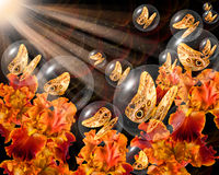 Bronze butterflies in crystal globes Stock Image