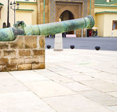 Bronze cannon in    africa morocco  green  and the old pavement Royalty Free Stock Photo