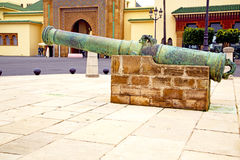 Bronze cannon in africa morocco  green Royalty Free Stock Image