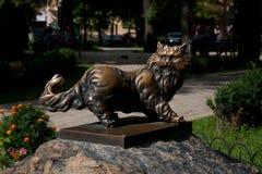 Bronze cat on a stone pedestal. Bronze cat in glasses on a stone pedestal Royalty Free Stock Image
