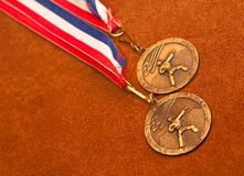 Bronze Champions. Martial Arts Bronze Medal Necklace royalty free stock photography