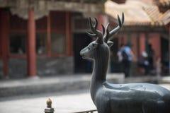 Bronze deer Stock Photos