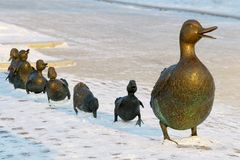 Bronze duck with her children stock photography