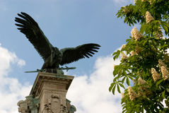 Bronze eagle against blue sky and flowering chestn Stock Photo