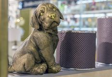 Bronze figure of a small sad puppy stock photography