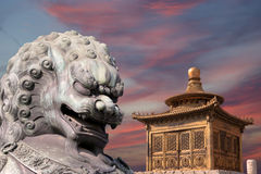 Bronze Guardian Lion Statue and pagoda, Beijing Stock Images