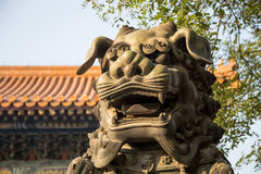 Bronze Guardian Lion Statue in Yonghe Temple (Lama Temple) in Beijing Royalty Free Stock Photo