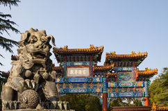 Bronze Guardian Lion Statue in Yonghe Temple (Lama Temple) in Beijing. China royalty free stock photography