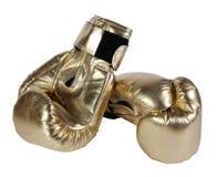 bronze handskar för boxning Royaltyfria Bilder