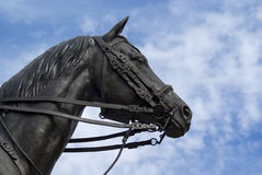 Bronze Horse Head. A bronze horse head Sculpture against a cloudy blue sky royalty free stock photo