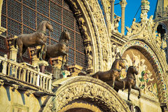Bronze horse statues on St. Mark`s Cathedral, Venice, Italy Stock Photos