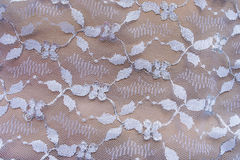 Bronze lace Royalty Free Stock Images
