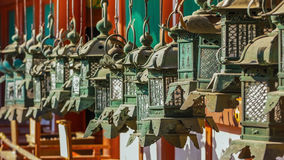Bronze Lanterns at Kasuga Taisha Stock Photography