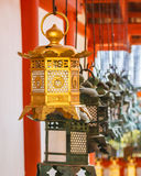 Bronze lanterns at Kasuga Taisha in Nara Royalty Free Stock Photo