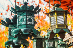 Bronze lanterns at Kasuga Taisha in Nara Stock Images