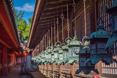 Bronze Lanterns at Kasuga Taisha Shrine Stock Images
