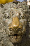 Bronze lion. Head of a lion made from bronze in Szeged, Hungary Stock Photos