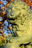 Bronze lion Stock Image