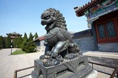 Bronze Lion Stock Photos