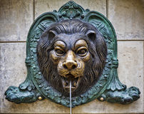 Bronze lion. Big bronze lion on a stone wall royalty free stock photography