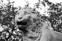 Bronze lion. Royalty Free Stock Photos