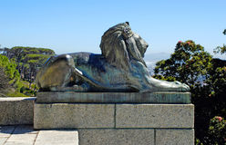 Bronze lion,Cape Town, South Africa. Royalty Free Stock Photography