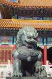 Bronze lion Stock Images
