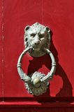 Bronze lion door knocker Royalty Free Stock Image