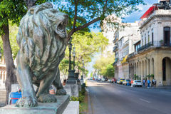 Bronze lion at El Prado in Havana. Bronze lion and historic buildings at El Prado Boulevard, a famous landmark in Havana royalty free stock photo