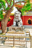 Bronze lion at the entrance to beautiful Yonghegong Lama Temple. Stock Image