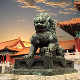 Bronze lion in the forbidden city stock image