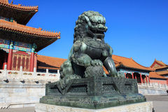 The Bronze Lion. In the forbidden city Stock Images