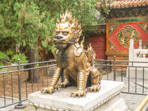 Bronze lion guarding entrance China. Garden of Beijing Forbidden city Royalty Free Stock Photography