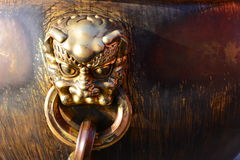Bronze lion head Stock Images