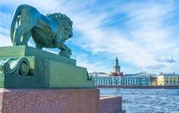The bronze lion at Neva River bank. The bronze lion at Dvortsovaya pier of the Admiralty Embankment opposite the Kunstkamera, located across Neva River on stock photos