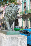 Bronze Lion at Paseo del Prado in Old Havana Royalty Free Stock Photography