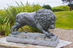 Bronze Lion Sculpture in the Slieve Donard Hotel Grounds royalty free stock photo