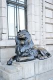 Bronze lion. In Shanghai Bund Financial Street Royalty Free Stock Images