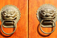 bronze lion-shaped knocker Royalty Free Stock Photo