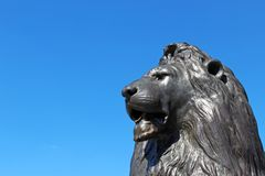 Bronze lion statue. And clear blue sky in the background stock images