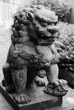 Bronze lion statue Stock Image