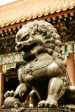Bronze lion statue Royalty Free Stock Photos