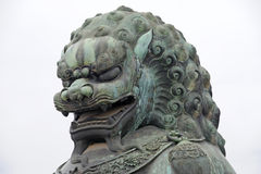 Bronze lion statue in the forbidden city. Bronze lion statue in front of taihe gate of the forbidden city, china Stock Photos