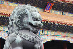 Bronze lion statue in the forbidden city. Bronze lion statue in front of taihe gate of the forbidden city, china Royalty Free Stock Photo