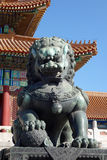 Bronze lion statue in the forbidden city Stock Photos