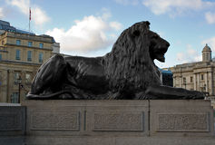 Bronze lion in Trafalgar Square Stock Images