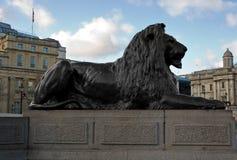 Bronze lion in Trafalgar Square. In London Stock Images