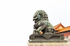 Bronze lion on white Royalty Free Stock Photo